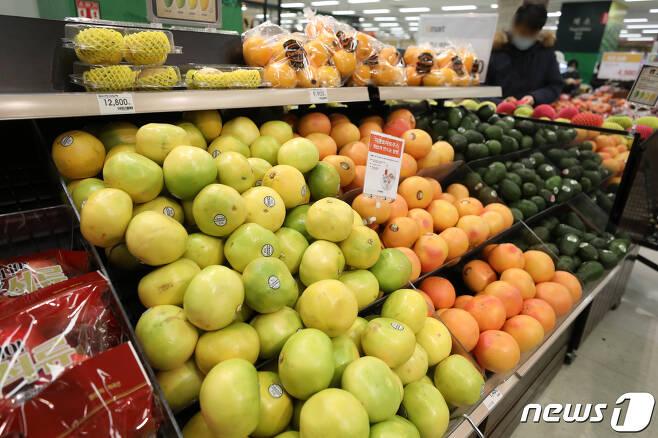 2021.1.11/뉴스1 © News1 이승배 기자