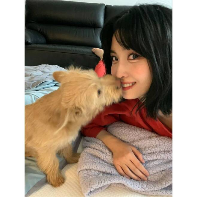 [Newsen Lee Ye-ji reporter]Group TWICE MOMO reported on the adoption of an abandoned dog.On January 21, TWICE official Instagram said, Ones! Yesterday, I told you about the V-App, but...Boo has a brother.The name is probably Dobyy  Dobyy or Wyr?  Doby is a dog. I was worried about Doby because he was an abandoned dog.I will raise Dobu Dobie pretty in the future, I will show a lot to Ones. In the open photo, MOMO released a large number of photos taken with the dog Dobie, who posted photos of selfies with two dogs and Dobie Dobie.In this news, the netizens responded that the face and the heart are good and the heart is warm.Meanwhile, TWICE released its digital single, CRY FOR ME, on December 18 last year. (Photo: official Instagram of TWICE)newsen lee ye-jiArticles and press release copyrightc Newsen. Unauthorized reprint & redistribution prohibited