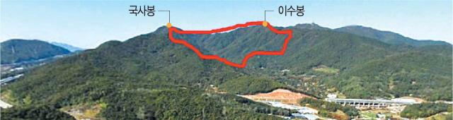 항공사진에 표시한 경기도 성남시 금토동 산73번지./자료=네이버지도