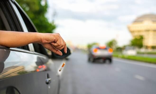 도로 쓰레기 투기 '인공지능 CCTV'로 잡는다…英 도시 시범 도입