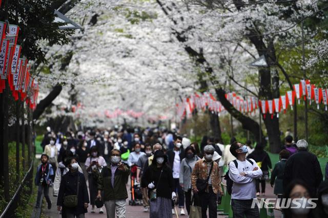 [도쿄=AP/뉴시스]26일 일본 도쿄에서 마스크를 착용한 시민들이 벚꽃이 활짝 핀 벚꽃로를 걷고 있다. 2021.03.26.