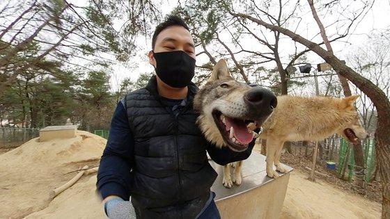 대전 오월드에서 사육사 박중상씨가 늑대와 어울리는 모습. 왕준열PD