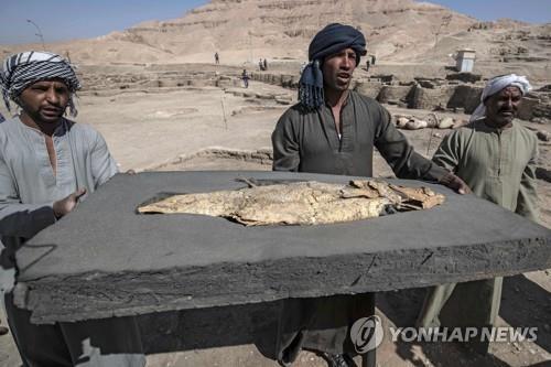 이집트 룩소르 고대 도시유적에서 나온 화석화한 물고기 [AFP=연합뉴스]