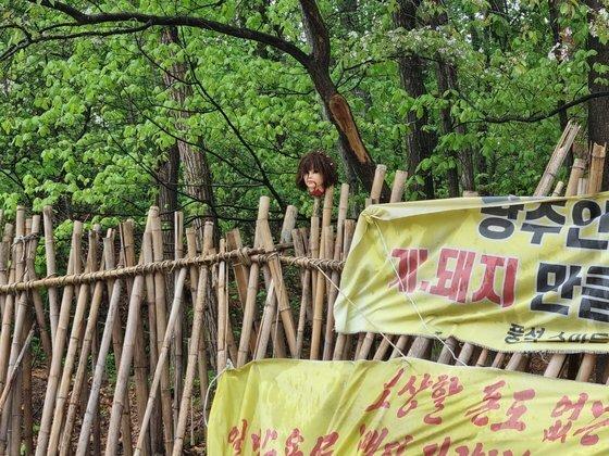 지난 12일 강남구 일원동에 위치한 한 야산에서 '마네킹 시위'가 벌어져 주민들의 항의가 잇따르고 있다. 최연수 기자