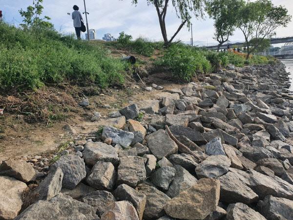 한강공원에서 실종됐다가 숨진 채 발견된 고 손정민 씨의 친구 A씨가 지난 4월 25일 새벽 4시20분경 혼자 발견된 장소 (사진=뉴스1)