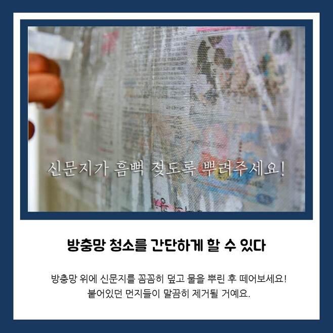 출처: 다음뉴스