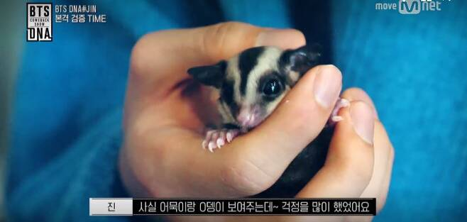 출처: Mnet 'BTS 카운트다운' 방송화면 캡처
