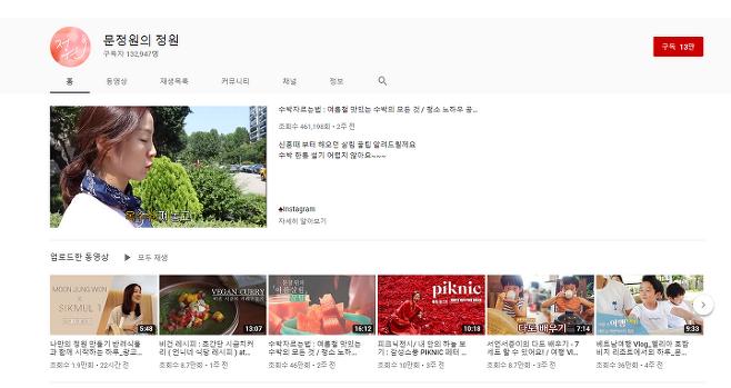 출처: 문정원 유튜브 캡처