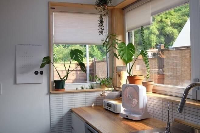 출처: 온라인 집들이 제품 정보 모아 보기 (▲이미지 클릭)