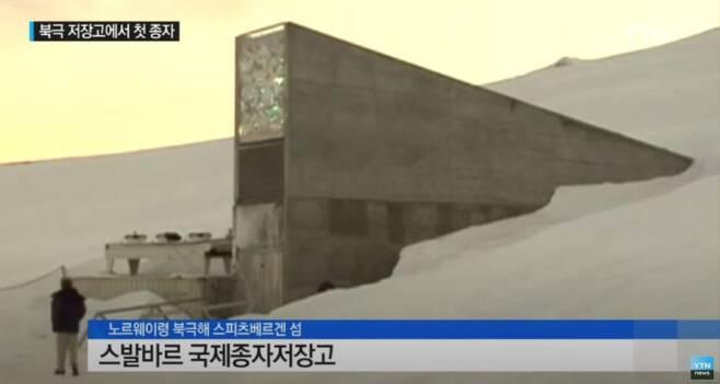 출처: YTN 뉴스 캡처