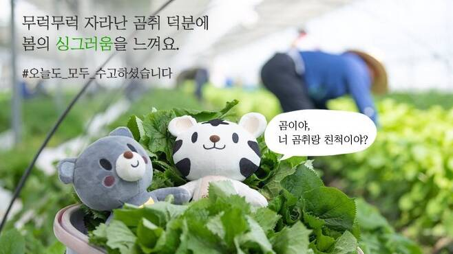 출처: 강원도 트위터