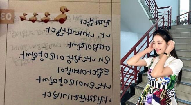 온라인커뮤니티 네이트 캡처 및 이나은 인스타그램 캡처