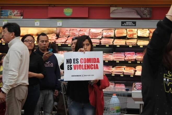 비폭력 방해시위는 세계 각국에서 벌어지는 동물권 행동이다. 사진은 미국의 방해시위. 사진은 멕시코 대형마트에서의 방해시위.