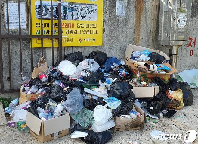 31일 낫개방파제 입구에 쌓여 있는 쓰레기들.2021.7.31/© 뉴스1 노경민 기자