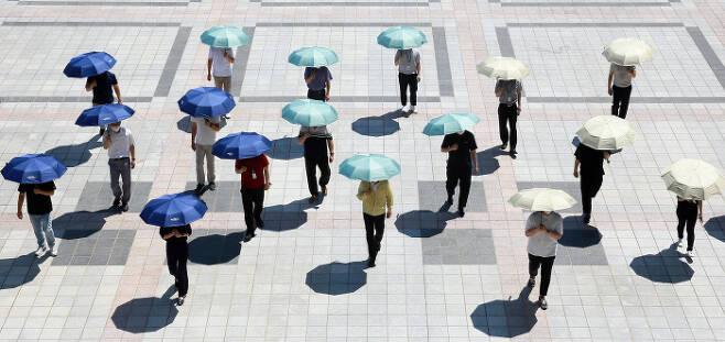 대전 서구의 공무원들이 지난달 25일 구청광장에서 양산을 써보이고 있다. 서구는 구청과 동 행정복지센터에 양산대여소를 설치하는 등 '양산 쓰기' 운동을 벌이고 있다.  대전 서구 제공