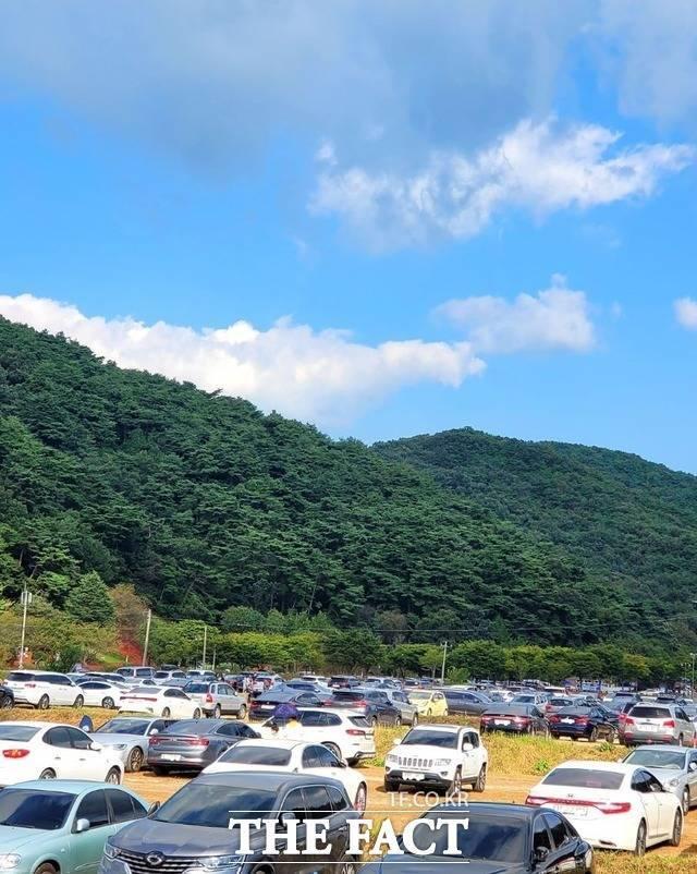 불갑산 관광단지 내 주차장은 주차할 공간이 없을 만큼 차량들로 꽉 차 있다./ 사진=이병석 기자