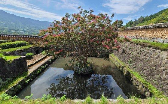 화사별서 방지. 네모난 연못을 방지라 한다. 집안의 기운이 빠져나가지 않게 하려고 연못을 팠다고 한다.