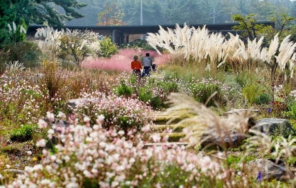 천리포 수목원은 아시아에서 처음으로 '세계의 아름다운 수목원'으로 인증될 정도로 '보물 수목원'이나 다름 없다. 사진=태안군.