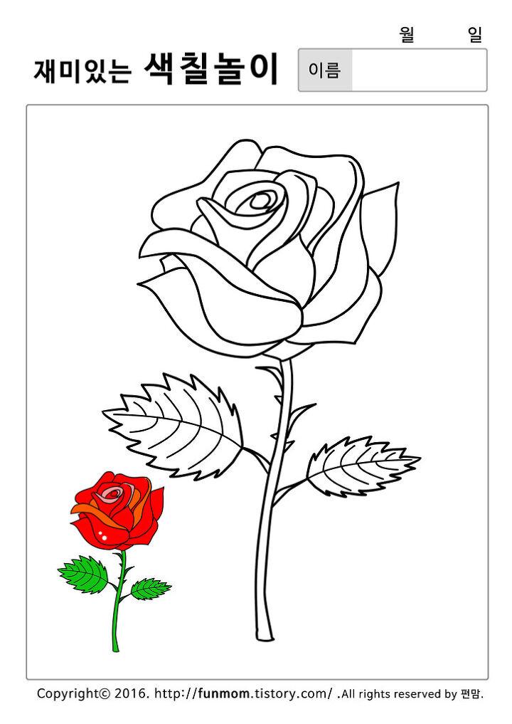 해바라기 나팔꽃 튤립 장미 꽃 색칠공부프린트 모음