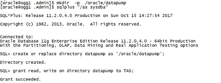 TD-ORACLE] migration using datadump docx
