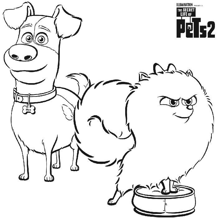 색칠공부 - '마이펫의 이중생활2 '(The Secret Life of Pets 2 ) 색칠 공부 11페이지