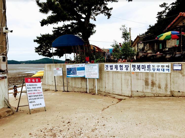 서해 갯벌체험 진산어촌계 조개잡이 후기