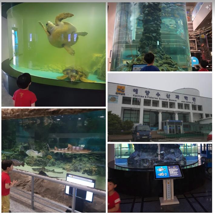 [여수여행] 해양수산과학관, 이순신 광장