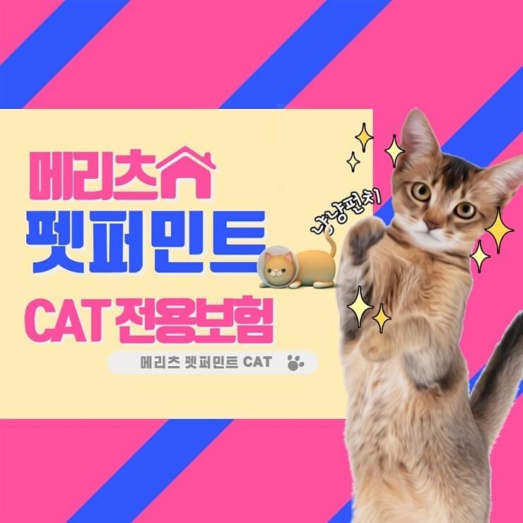 메리츠화재 반려동물 실손의료비보험펫퍼민트 Cat
