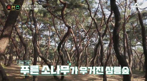 프렌즈 삼릉숲 촬영지 장소 위치 어디?