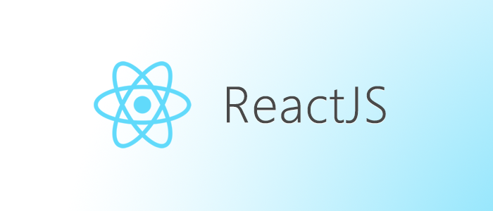 ReactJS - Software Developer - softm