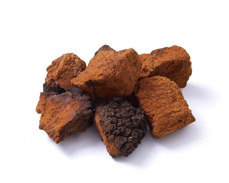 차가버섯 끓이는법 먹는법 바로알기