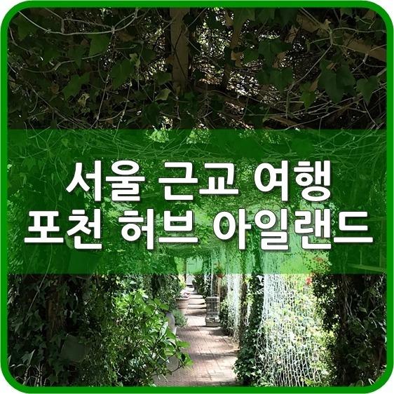 서울 근교 여행 포천 허브 아일랜드