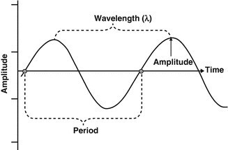 [Ultrasound Physics] GENERAL TERMS
