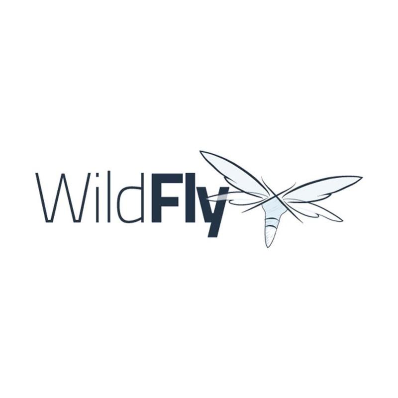 [WildFly] 운영자 검검 리스트