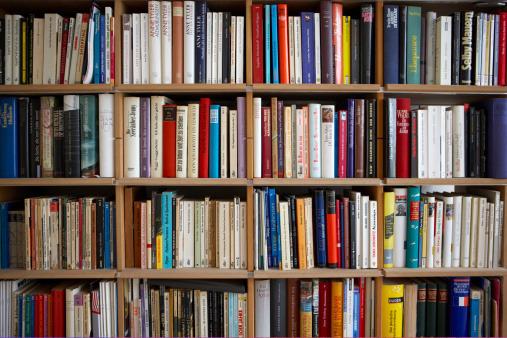 informacao-procedimento-interno-de-designacao-de-professor-bibliotecario