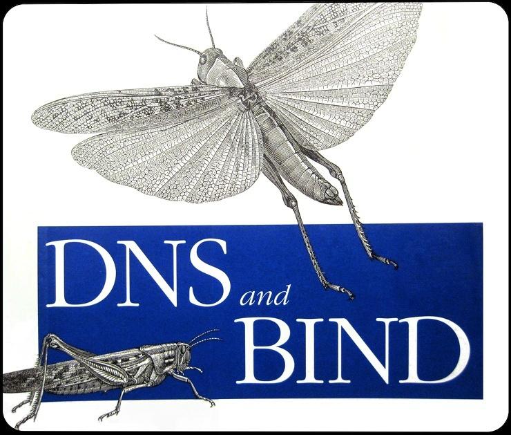 [Centos 6.5] DNS 서버 구축 (bind 9.8.2-0)