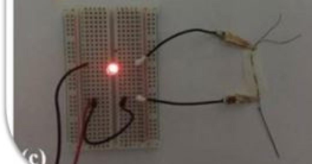 [과학을 읽다]실크로 값싼 전자섬유 만든다