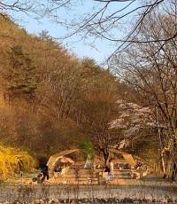 가을엔 단풍 구경 해야지~ 단풍 맛집 남한산성 카페 4
