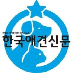 koreadognews 이미지