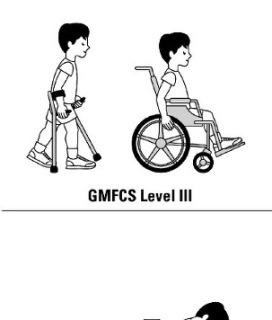 GMFCS(대동작기능분류체계)