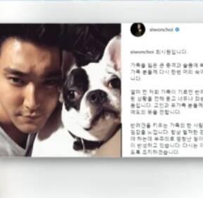 [뉴스초점] 유명 한식당 대표 개에 물린 후 사망..견주 가족 최시원 사과