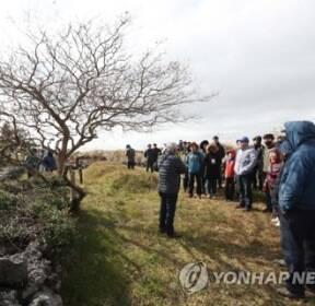 [카메라뉴스] 제주4·3 영화 '지슬' 주인공을 따라 걷다