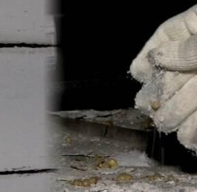 환경부, '석면 건축물 위치' 20일부터 온라인서 공개