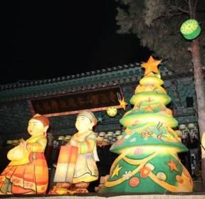 [슬라이드 포토] 조계사에서 불 밝힌 크리스마스트리