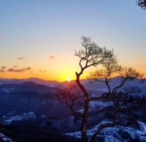 [사진현장] 눈과 햇살로 상처를 보듬다