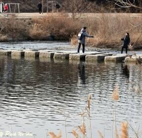 [포토친구] 봄빛 흐르는 도심