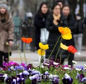 [포토뉴스]21일 춘분..꽃샘추위에 움츠린 시민들