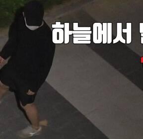 [자막뉴스] 하늘에서 떨어진 식칼..도대체 무슨 일이?