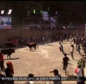 [이 시각 세계] 흥분한 황소에 들이받혀 페루서 10명 부상