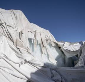 [한컷의 울림] 빙하의 몸살